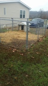 Pets For Sale In Hopkinsville Ky Hopkinsville Bookoo
