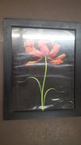 """19"""" x 23"""" Rose Wood Frame Picture in Kingwood, Texas"""