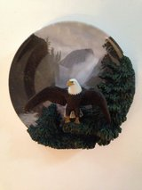 Eagle Vantage Point 3D Collector Plate in Bolingbrook, Illinois