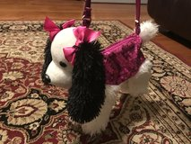 Puppy purse in St. Charles, Illinois
