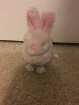 Pink fuzzy bunny wind up toy in Camp Lejeune, North Carolina