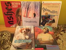 Lot of new preeteen girls chapter books in Bolingbrook, Illinois