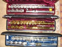 professional flutes in Ramstein, Germany