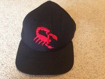 Scottsdale Scorpions baseball hat in St. Charles, Illinois