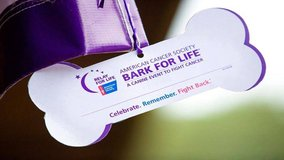 5K Dog Walk/Run Bark for Life 2019 Event in Fort Campbell, Kentucky