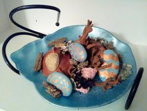 """Easter Egg Reef"" on Frosted Blue Seashell Plate in Wilmington, North Carolina"