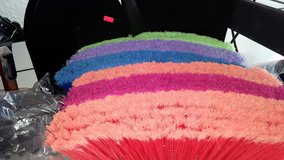 Colorful brooms in Yucca Valley, California