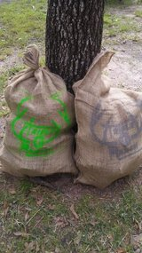 Mesquite wood perfect for Rodeo BBQ grilling South Texas ranch in Spring, Texas