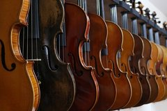 Hundreds of Violins, Violas, and Cellos for sale! in Lockport, Illinois