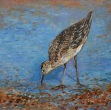 A Bird on the Beach (South Downs) by Edita Tamulyte 2012 in Lakenheath, UK