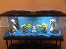 55 Gallon fish tank with stand, plus all the extra's (Lower Price) in Ramstein, Germany