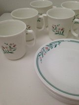 Corelle Rosemarie Pattern Cups and Desert Plates in Naperville, Illinois