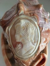 Cameo Hand Carved Conch Shell in Kingwood, Texas