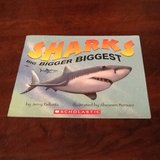 Sharks Big Bigger Biggest Book in Spangdahlem, Germany