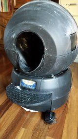 Litter Robot automatic self cleaning litter box in Naperville, Illinois
