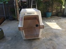 Giant kennel with a 5 inch extension in Okinawa, Japan