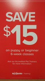 Professional Dog Training sale at Petsmart in Mayfaire in Wilmington, North Carolina