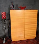 Mid Century Shoe Cabinet with Hanger Doors in Ramstein, Germany