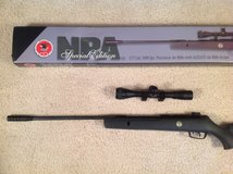 Gamo NRA 1000 Special Edition air rifle in Alamogordo, New Mexico