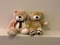 Teddy bears about 12 inches tall in Lockport, Illinois