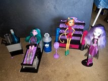 Monster High lot in Tinley Park, Illinois