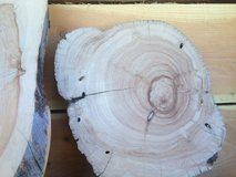 11 inch juniper trivets. Other sizes available. in Alamogordo, New Mexico