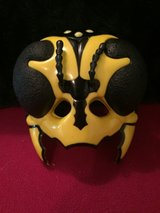 Insect Mask in Lockport, Illinois