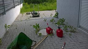 POWERFUL YARDWORK, PRESSURE WASH, PCS CLEANING, COUCH AND CARPET SHAMPOO in Ramstein, Germany