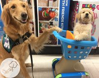 Yard Sale Fundraiser for paws4people in Wilmington, North Carolina