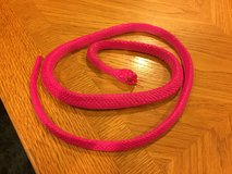Pink Snake in Bolingbrook, Illinois