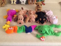 Early Beanie Babies in Bolingbrook, Illinois