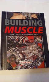 Building Muscle in Elgin, Illinois