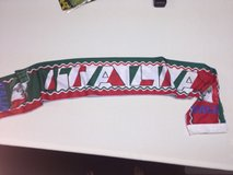 Italia Soccer Scarf in Bolingbrook, Illinois