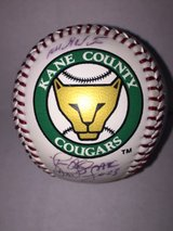 Kane County Cougar Ball in Joliet, Illinois