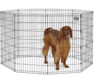 Kennel with top grate 4'x4'x4' in Schaumburg, Illinois