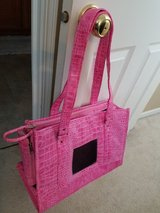 CLEARANCE Pink Pet Carrier by Chelsea Paws in Aurora, Illinois