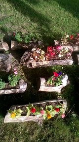 Custom Fairy Gardens in Sandwich, Illinois