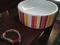 Dog/Cat Bowl and Collar-Dollar days in St. Charles, Illinois