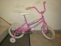 Young Girls Bike in Chicago, Illinois