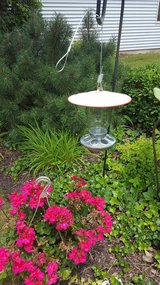 Jar seed birdfeeder in Joliet, Illinois