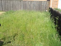 Garden tidying in Lakenheath, UK
