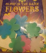 GLOW IN THE DARK FLOWERS in Oswego, Illinois