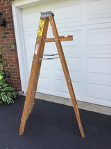 Ladder in Bolingbrook, Illinois