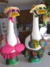 Large Goose outfits in Lockport, Illinois