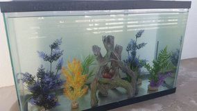 20 gallon fish tank with plants and wood for sale in Okinawa, Japan