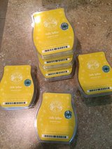 Scentsy Hello Yellow in Kingwood, Texas