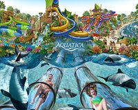 2 Aquatica Waterpark Tickets ~ Sea World's Aquatica Water Park in Camp Pendleton, California