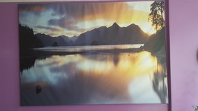 Large Ikea Wall Picture in Naperville, Illinois