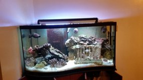 95 gallon pre drilled Fish Tank&Stand in Beaufort, South Carolina