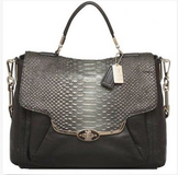 Coach 26338 Leather Purse in Naperville, Illinois